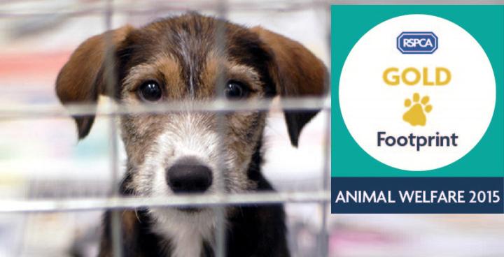 Gold Animal Welfare Footprint award for Lambeth