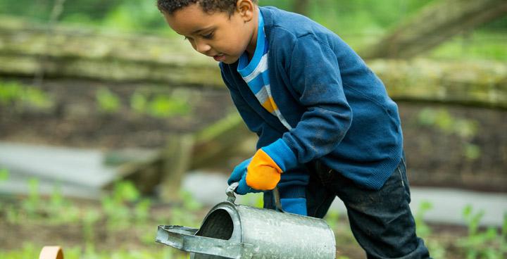 School Garden Grants for Lambeth schools