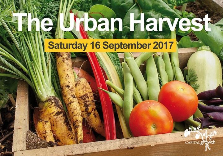 The Urban Harvest