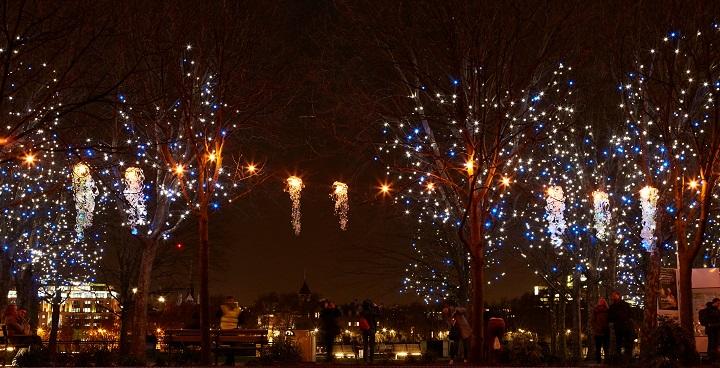 Lumiere light sculptures 'on tour' with Clapham Omnibus
