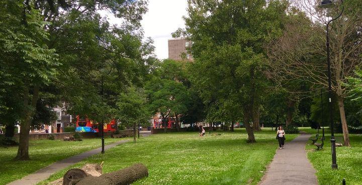 Revitalising Rush Common