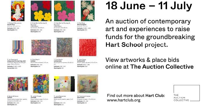 Online auction raises funds for inclusive art school