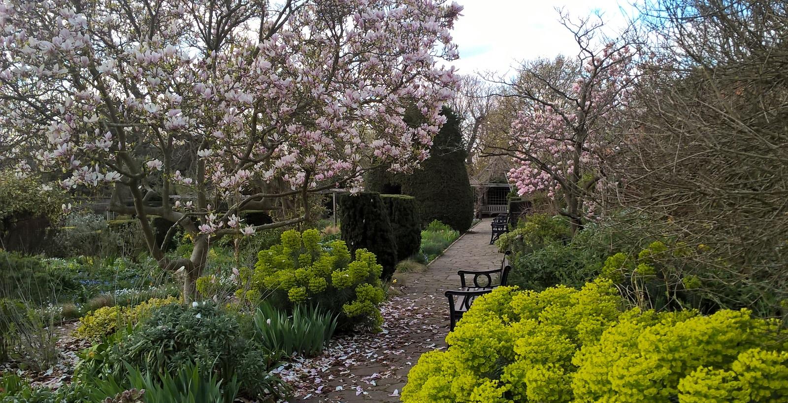 Brockwell Walled garden